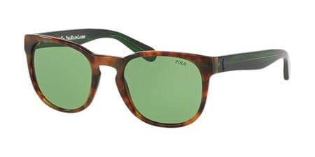 b99f8ebaf443 Polo Ralph Lauren Sunglasses | SmartBuyGlasses New Zealand