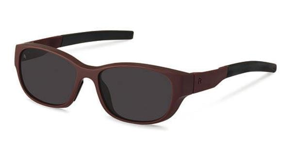 INOpets.com Anything for Pets Parents & Their Pets Rodenstock Sunglasses R3273 E